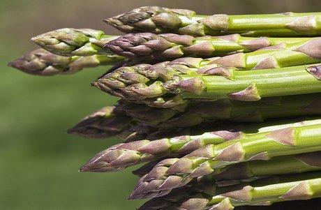 Asparagus Iodine